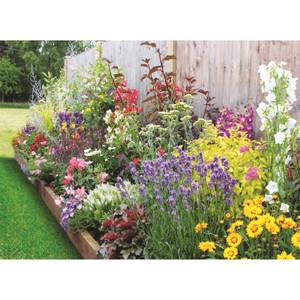 Bee and Butterfly Border 2m X 120cm