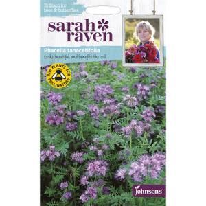 Sarah Ravens Phacelia Tanacetifolla Seeds