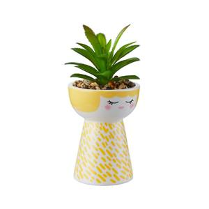 Mummy Planter with Succulent - Yellow