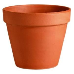 Terracotta Plant Pot - 11cm