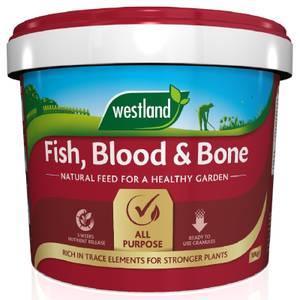 Westland Fish, Blood and Bone - 10kg