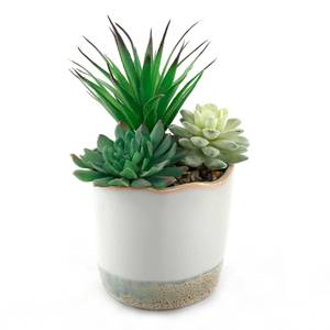 Dipped Ceramic Pot with Plant - Green