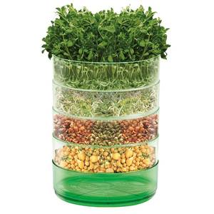Mr. Fothergill's Microgreens Kitchen Seed Sprouter