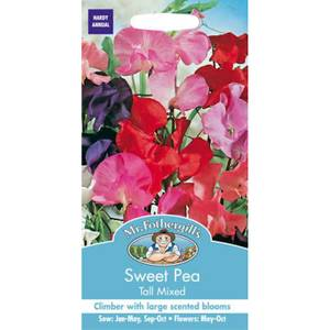 Sweet Pea Tall Mixed (Lathyrus Odoratus) Seeds