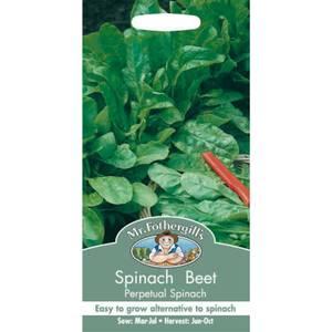 Spinach Beet Perpetual Spinach (Beta Vulgaris) Seeds