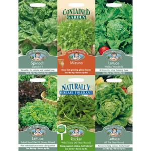 Lettuce and Leaves Seeds Bundle