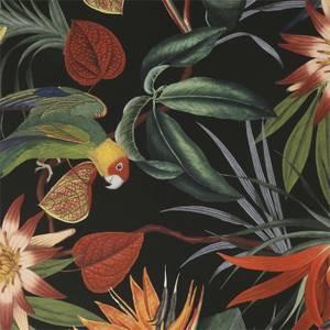 Superfresco Easy Parrot Black Wallpaper