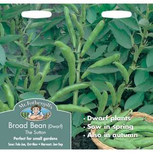 Mr. Fothergill's Broad Bean The Sutton (Vicia Faba) Seeds
