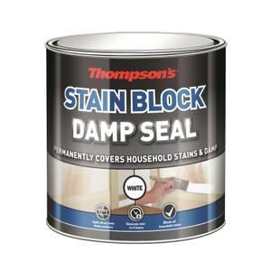 Thompsons Damp Seal - 250ml