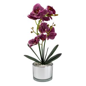 Orchid with Silver Glass Pot - Purple