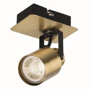Lucy Single Lamp Spotlight, Gold/Black