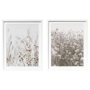 Country Living Set of 2 Cornfield Prints - 40x50cm