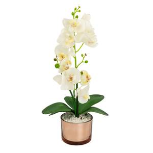 Large Real Touch Orchid