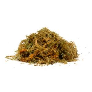 New Zealand Sphagnum Moss - Jumbo - Enough to line up to three 14 baskets