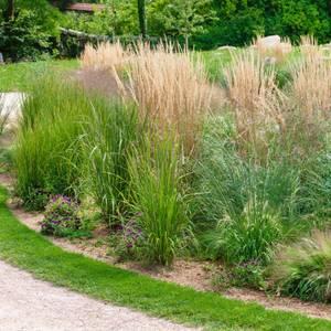 Grass Mix 1 19cm