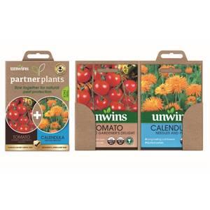 Partner Plants Tomato Calendula