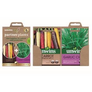 Partner Plants Carrot Garlic Chives