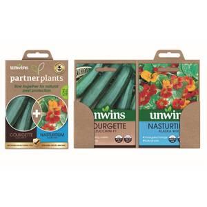 Partner Plants Courgette Nasturtium