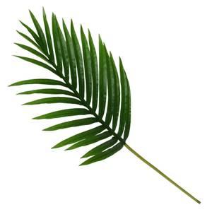 Mini Palm Leaf
