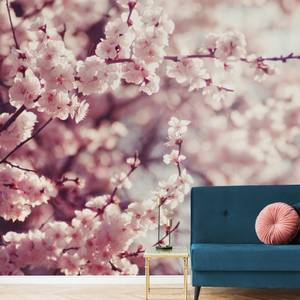 Romantic Blossom Wall Mural