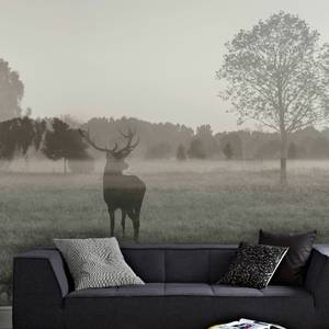 Stag In The Woods Wall Mural
