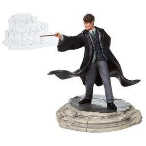 Wizarding World Of Harry Potter Tom Riddle Figurine