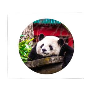 Lazy Panda Fleece Blanket