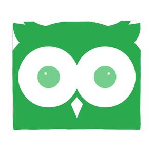Green Owl Bed Throw