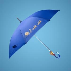 Cinderella Umbrella
