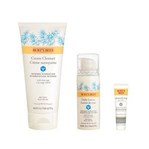 Burt's Bees Detox & Hydration Skin Regime