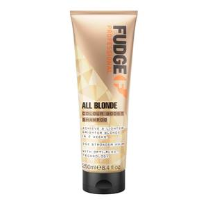 All Blonde Colour Booster Shampoo 250ml