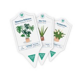 House Plant Care Tags
