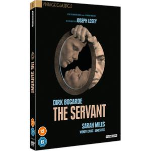 The Servant (Vintage Classics)