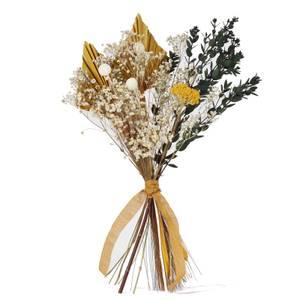 Shida Preserved Flowers - Lumi