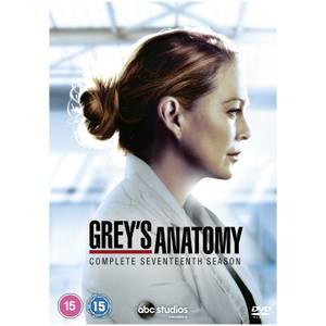 Grey's Anatomy - Season 17