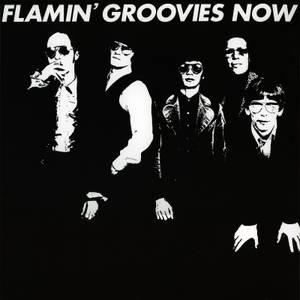 Flamin' Groovies - Now LP