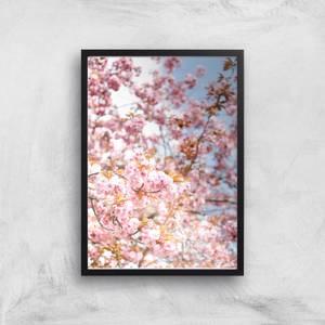 Blossom Giclee Art Print