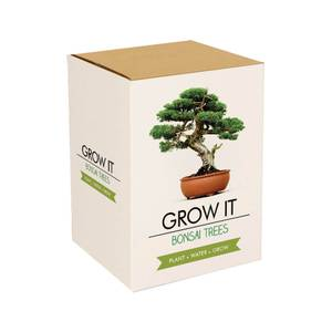 Grow It Bonsai Tree