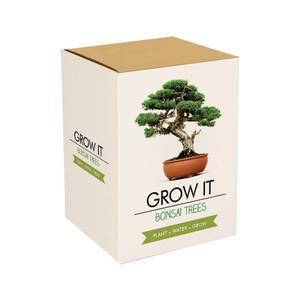 Grow It Bonsai Tree
