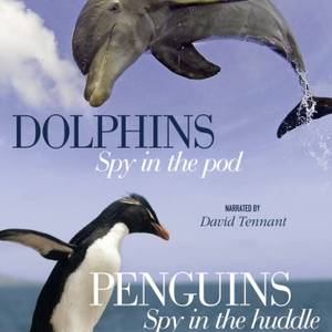 Penguins and Dolphins - The Spy Collection