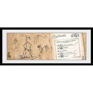 Fantastic Beasts Bow Truckle - 30 x 12 Inches Framed Photograph