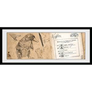 Fantastic Beasts Niffler - 30 x 12 Inches Framed Photograph