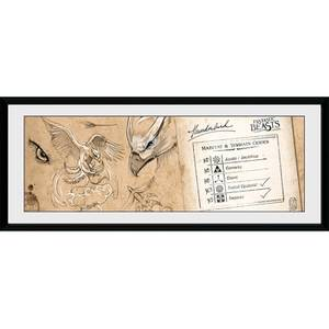 Fantastic Beasts Thunderbird - 30 x 12 Inches Framed Photograph