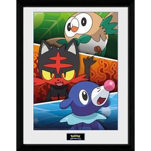 Pokémon Alola Partners - 16 x 12 Inches Framed Photograph