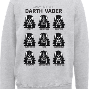 Felpa Star Wars Many Faces Of Darth Vader- Grigio