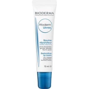 Bioderma Atoderm dry lips moisturiser 4G
