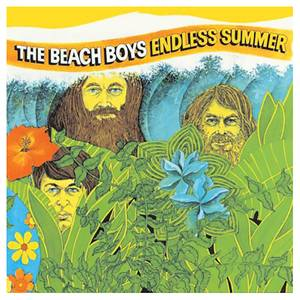 Beach Boys - Endless Summer - Vinyl