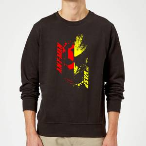 Ant-Man And The Wasp Split Face Sweatshirt - Black