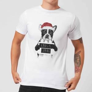 Balazs Solti Xmas Is Coming Men's T-Shirt - White