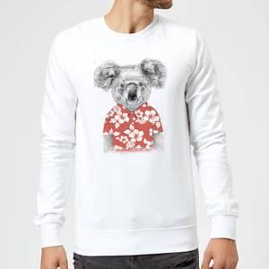 Balazs Solti Koala Bear Sweatshirt - White